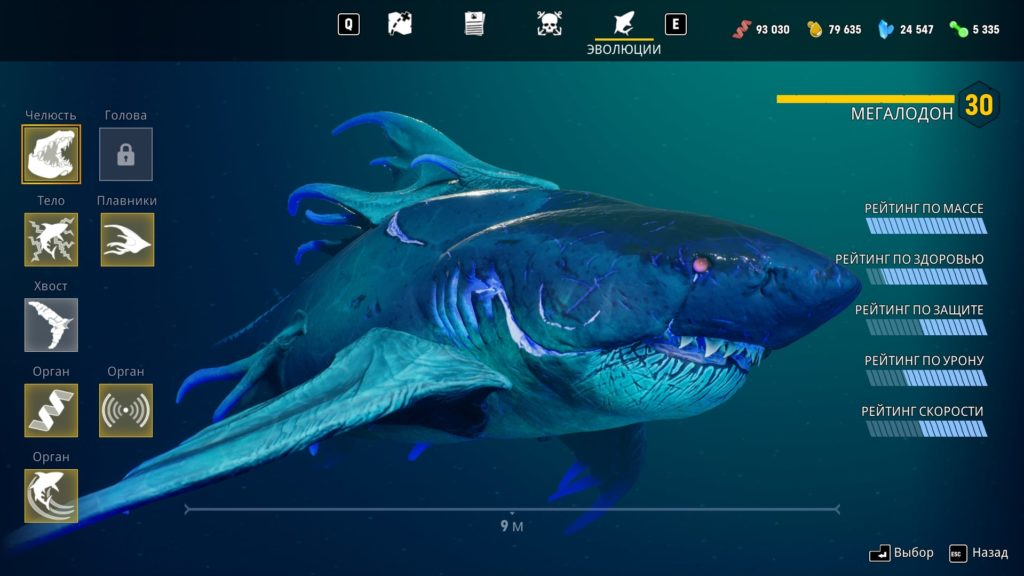 Характеристики вашей акулы в гроте
