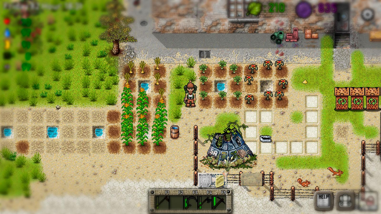 Green Project ферма в условиях выживания
